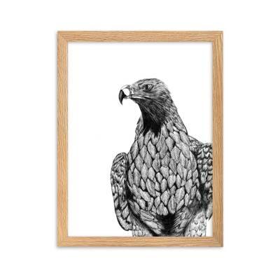 Wedge Tailed Eagle Art
